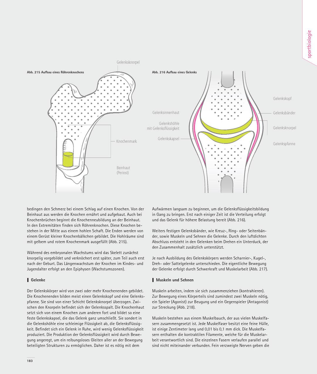 handbuch-sportklettern_183